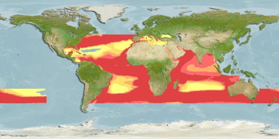 Карта мест обитания рыбы луфарь (гумбар, bluefish)